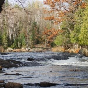 oxtongue-rapids